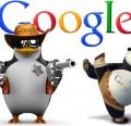 penguin-panda